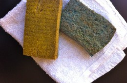 Extend the Life of your kitchen sponge