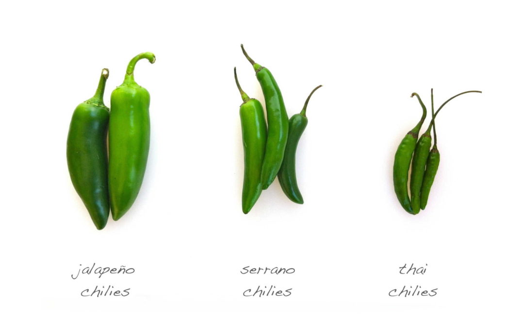 Which Chilies?